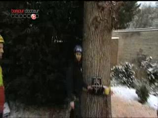 L'abattage, malgré la neige, d'un arbre peut causer des blessures s'il n'est pas fait avec quelques précautions.