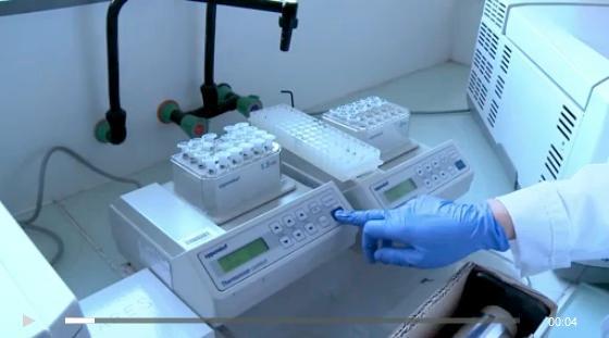 Recherche sur les cancers : tout s'accélère