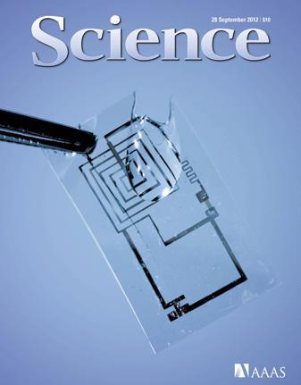 Des implants électroniques biodégradables