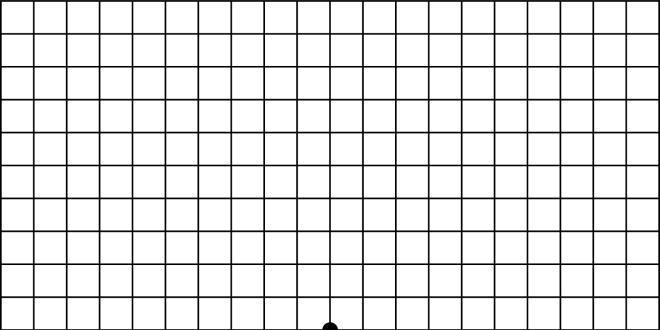 Image 1 - Cliquez sur le visuel pour voir en grand