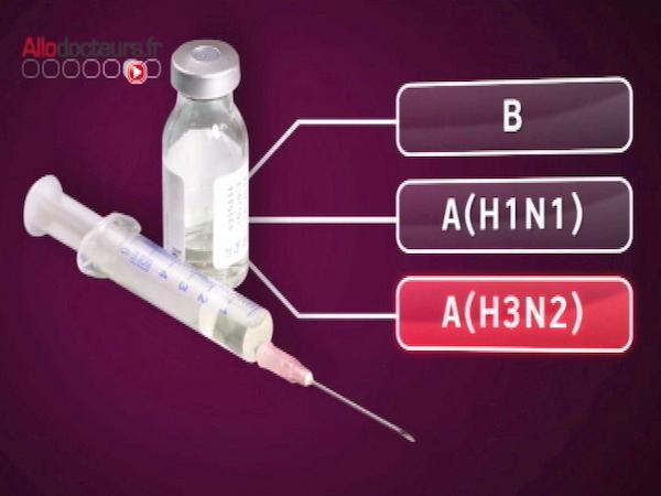 Le vaccin de la grippe hivernale 2012/13 fabriqué à partir de trois souches