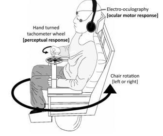 Le dispositif expérimental de la première phase de l'expérience (DR)