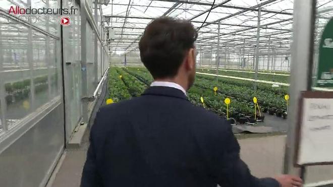 Cultiver une grande variété d'agrumes