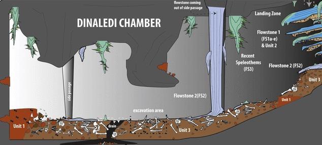 Schéma du site de découverte des ossements, la ''chambre Dinaledi''.
