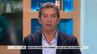 Marina Carrère d'Encausse et Michel Cymes expliquent les douleurs intimes chez l'homme