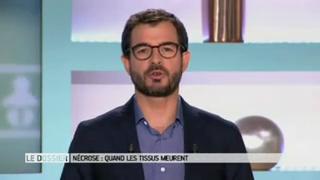 Marina Carrère d'Encausse et Benoît Thevenet expliquent la nécrose.
