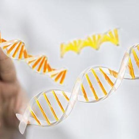 Maladies rares : la maladie dans les gènes