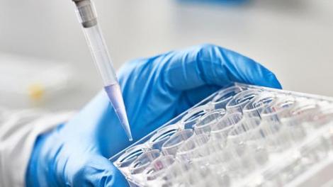 Affaire Grégory : qu'est-ce que l'ADN de parentèle ?