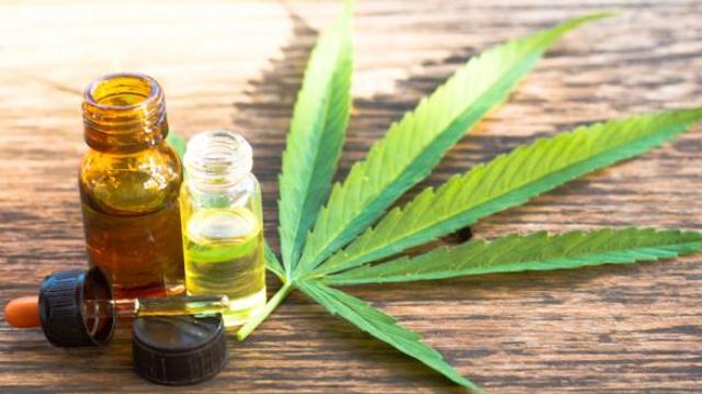 Cannabis médical : début des premières consultations