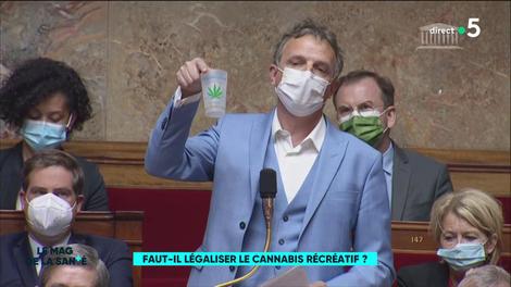 Les spécialistes restent partagés sur la légalisation du cannabis récréatif