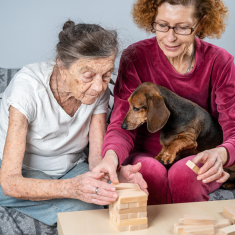 Apaiser les malades d'Alzheimer grâce aux chiens