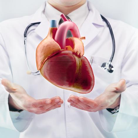Cinq conseils pour prendre soin de son coeur