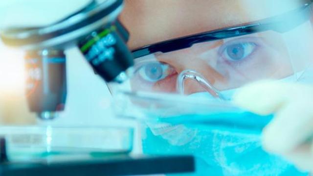 Loi bioéthique : le Conseil constitutionnel valide la recherche sur les embryons