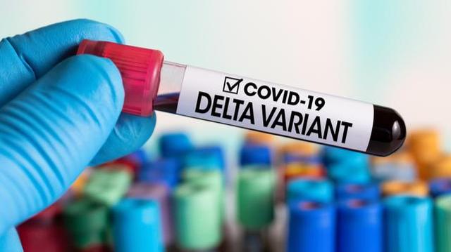 Covid : le variant Delta serait plus dangereux, selon une nouvelle étude