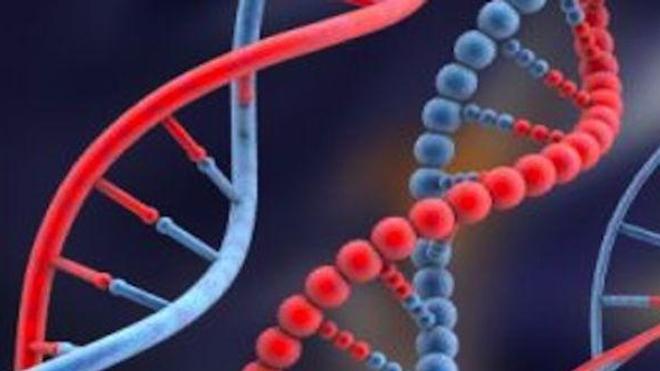 Les mutations d'un gène dans plusieurs formes rares de cancers