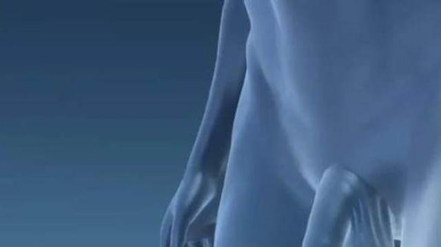 Le premier greffé du pénis bientôt papa