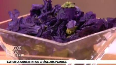 Plantes anti-constipation : sous quelle forme doit-on prendre l'aloe vera ?