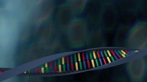 Viol dans un lycée : prélever et comparer l'ADN pour confondre un coupable