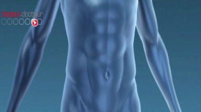 La testostérone, le nouvel élixir de vérité ?