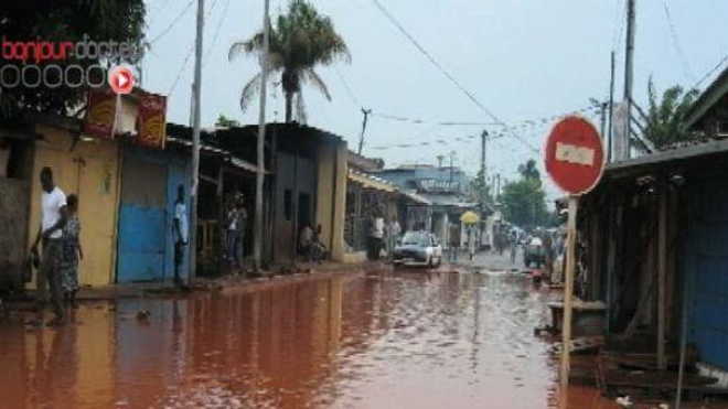 L'impressionnant recul des maladies tropicales