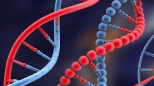 Mélanomes : des mutations caractéristiques dans l'ADN non codant