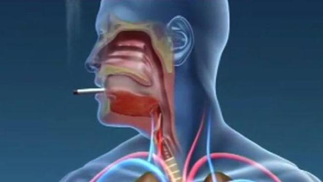 Ch@t : Où en êtes-vous avec le tabac ?