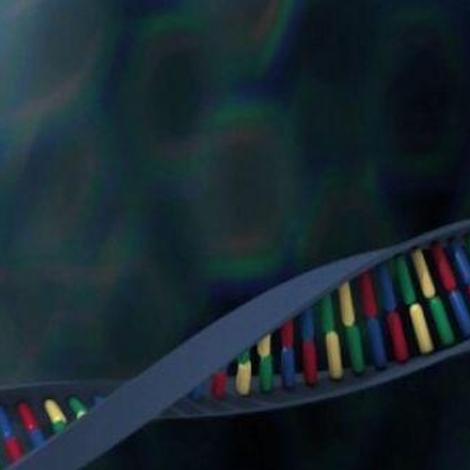 Comment identifier une personne grâce à l'ADN?