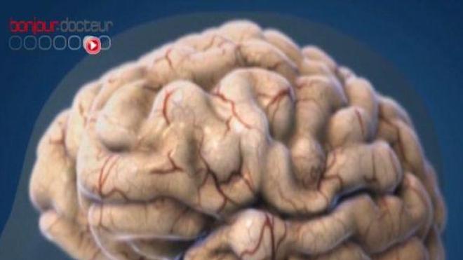 Infarctus : le cerveau en mode survie