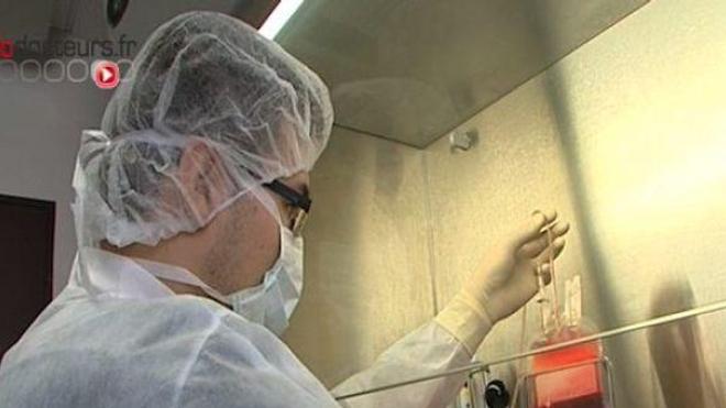 Des recherches sur l'embryon bientôt élargies ?\t