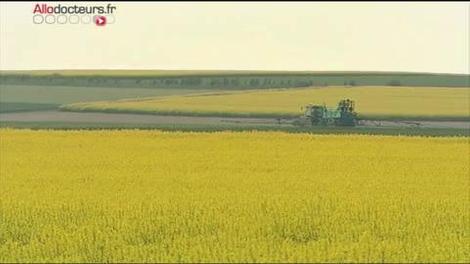 Pesticides : l'Inserm dresse le bilan de trente années de recherches